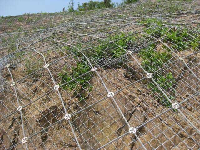 山坡防护网的功能